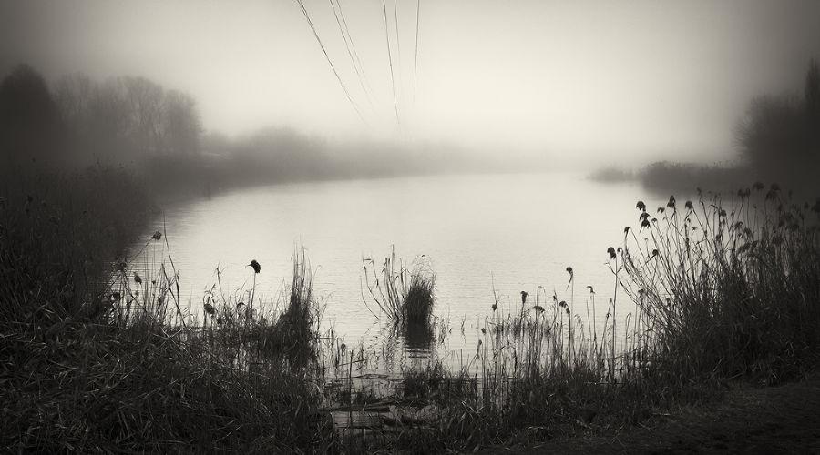 © Фотография предоставлена Дмитрием Сеником