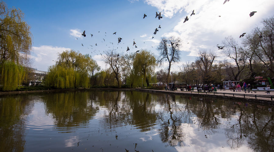 © Фото Елены Синеок, Юга.ру