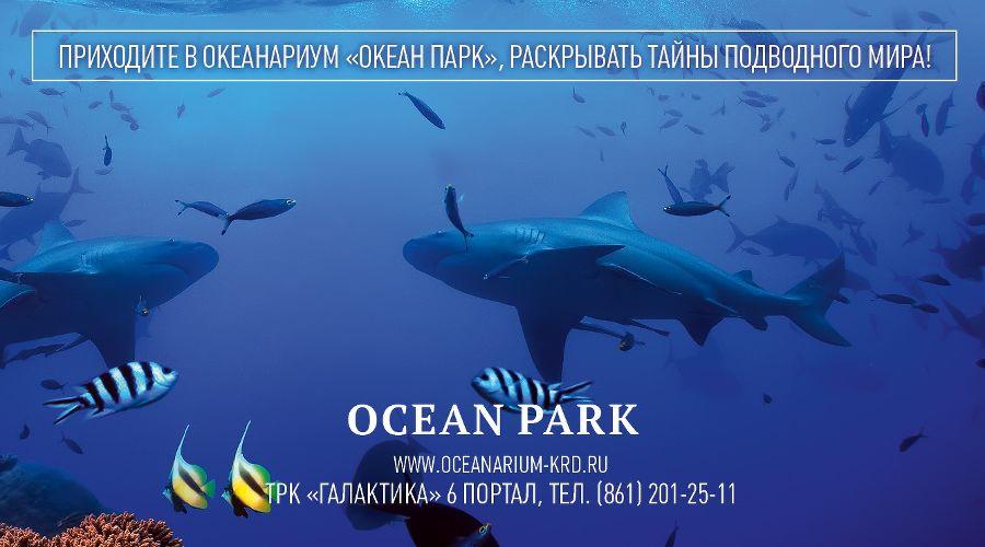 Океанариум Ocean Park в ТРЦ «Галактика» в Краснодаре, ул. Уральская, 98/11 © Фото пресс-службы океанариума Ocean Park
