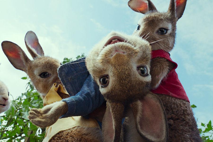 Кадр из мультфильма «Кролик Питер»