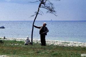 Кадр из фильма «Жертвоприношение», реж. Андрей Тарковский, 1986 год © Фото с сайта kinopoisk.ru