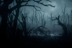 ©Кадр из сериала «Ведьмак», kinopoisk.ru