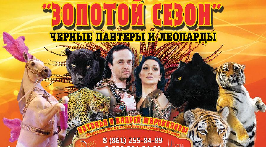 Золотой сезон © Фото Юга.ру
