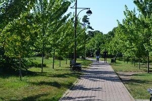 Ботанический сад им. Косенко ©Фото Ринаты Фирсовой, Юга.ру