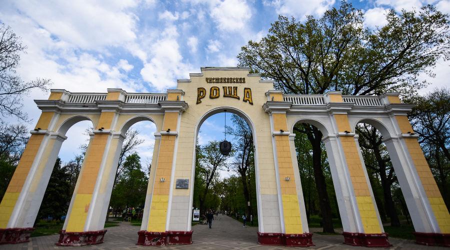 Чистяковская роща © Фото Елены Синеок, Юга.ру