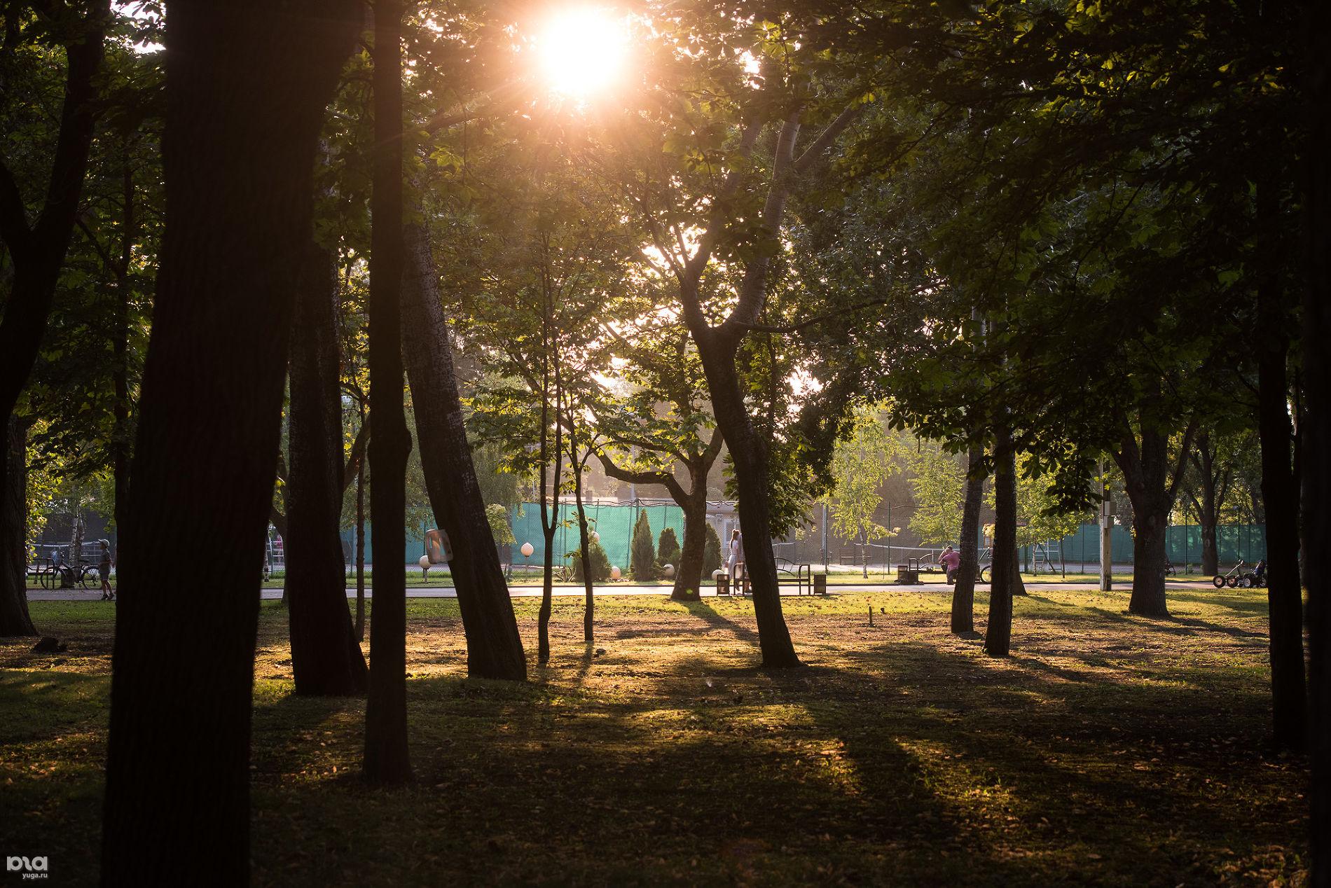 «Солнечный остров» ©Фото Елены Синеок, Юга.ру